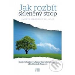 Jak rozbít sklenený strop - kniha v českom jazyku